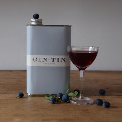 Gin In A Tin - Sloe Gin - Blend 15