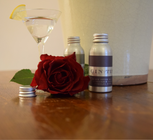 Gin In A Tin - Gift Set of 12 Stunning Gins